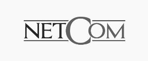 logo netcom png IPE Business School