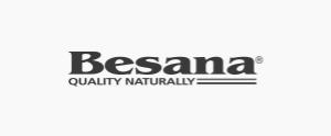 logo besana png IPE Business School