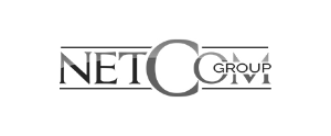 IPE Business School logo netcom png